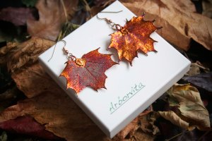 Real Maple leaf earrings